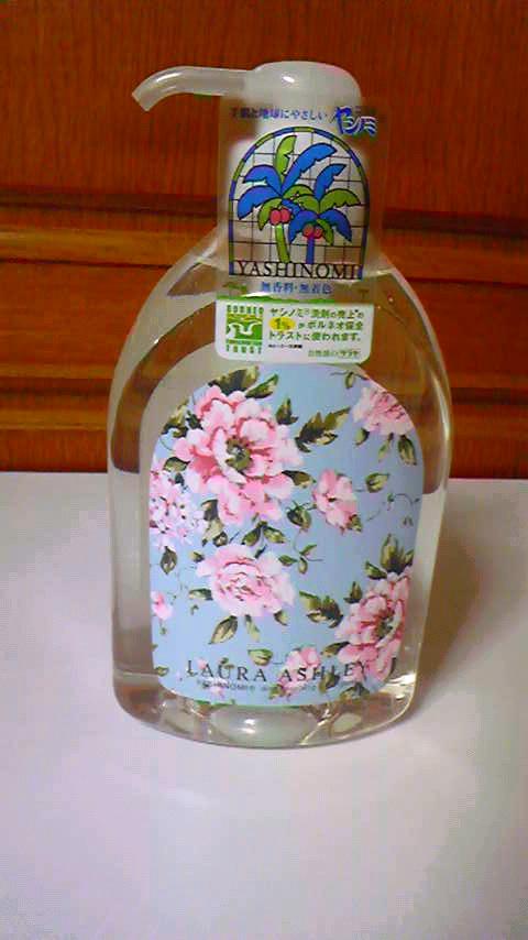 ヤシノミ洗剤.jpg